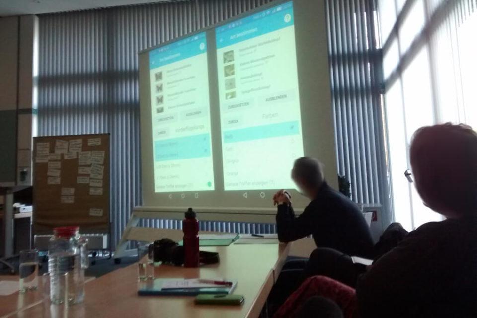 Foto während des Vortrags zum Insekten-Monitoring. Man sieht eine Folie einer Präsentation aus einem Vortrag, in dem es um die Bestimmung von Arten durch Laien mit Hilfe einer APP geht.